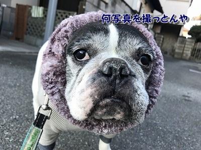 寒い (1)