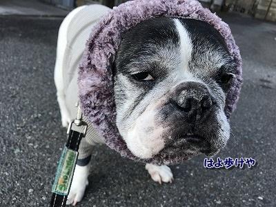 寒い (2)