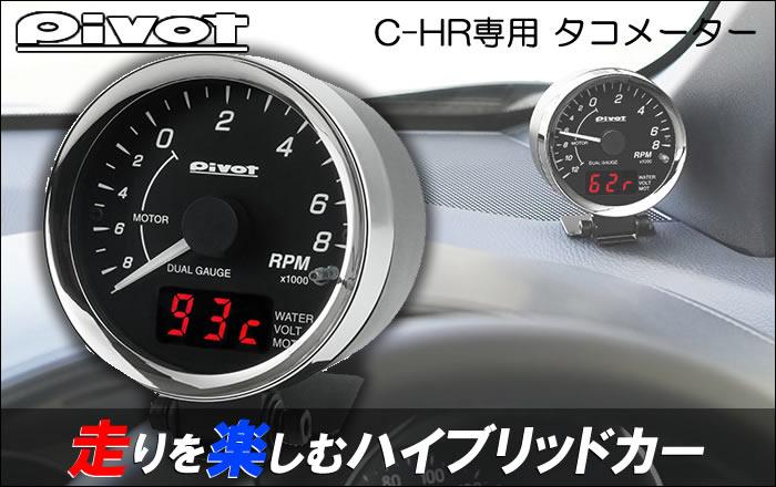 chr291-1.jpg