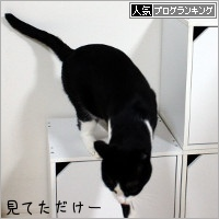 dai20181011_banner.jpg