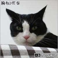 dai20181016_banner.jpg
