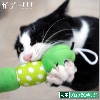 dai20181210_banner.jpg
