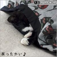 dai20181211_banner.jpg