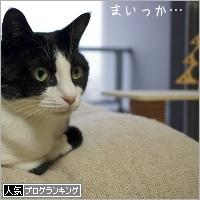 dai20181212_banner.jpg