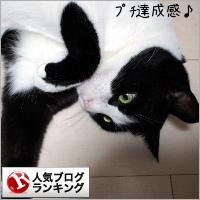 dai20181213_banner.jpg