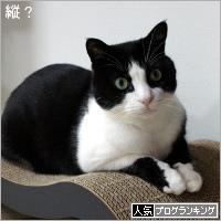 dai20181214_banner.jpg