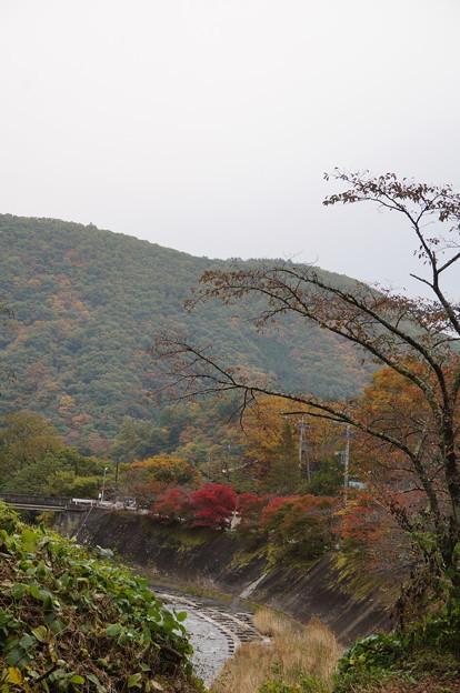 山と紅葉と川
