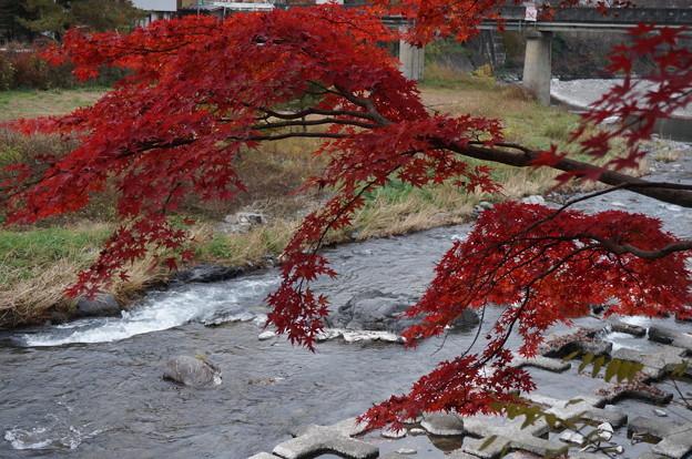 川と紅葉って相性いいですよね♪
