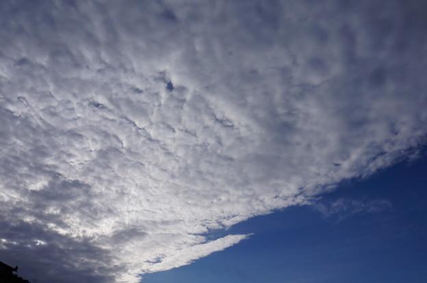 泡みたいな雲