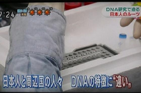 日本人と周辺国の人々 DNAの特徴に【違い】!『NHKニュース「おはよう日本」』