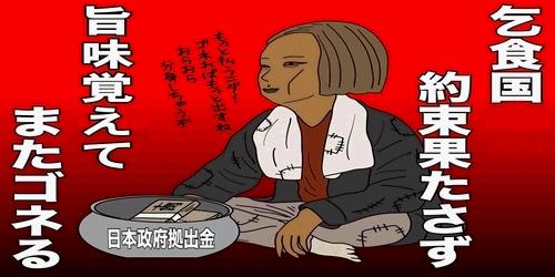 【韓国】日本に「責任ある措置」要求か=慰安婦合意で韓国政府