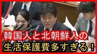 桜内文城 外国人の生活保護