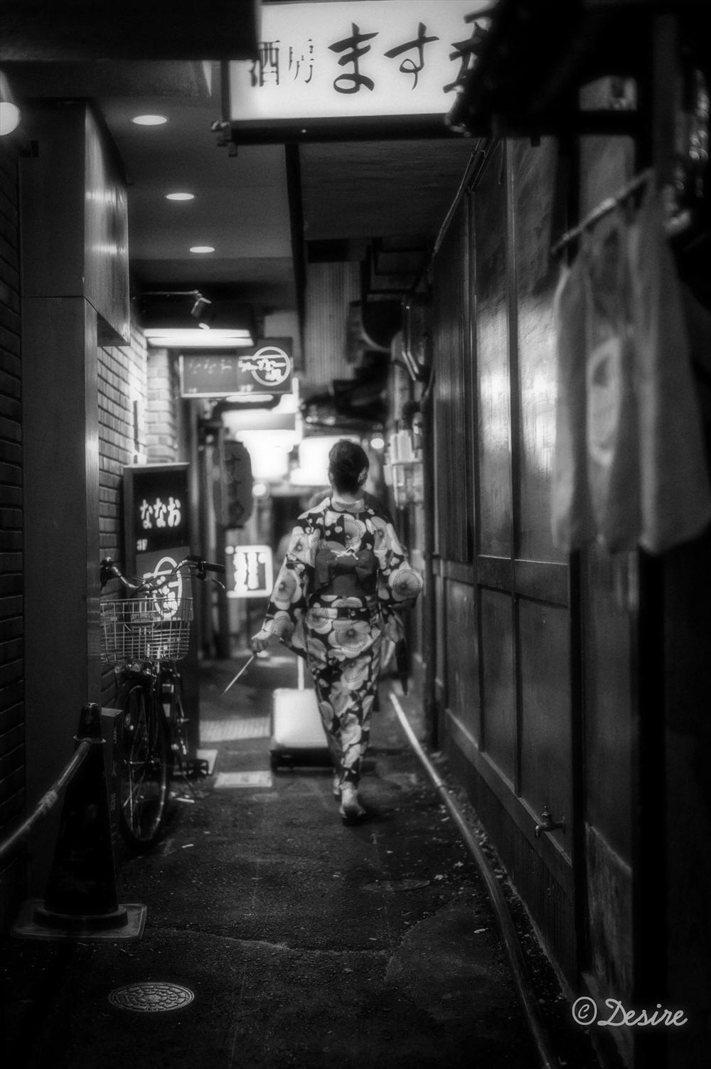 KyotoL1026888.jpg