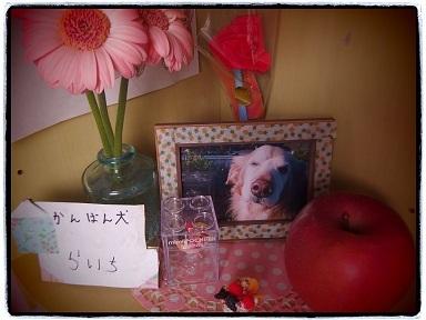 12-31raichi1g.jpg