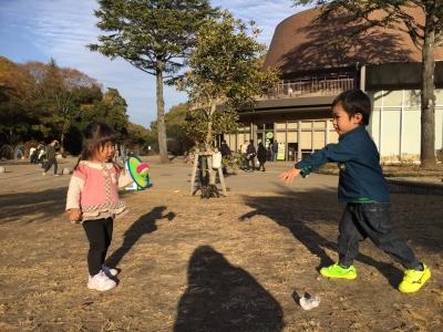 1126 生田緑地にて_171127_0035