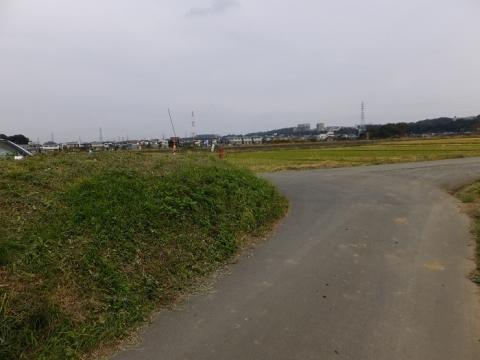 相模川旧堤防
