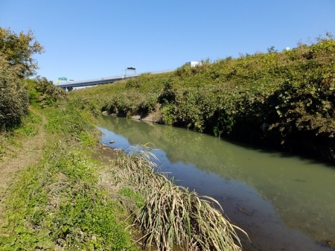 永池川河口付近