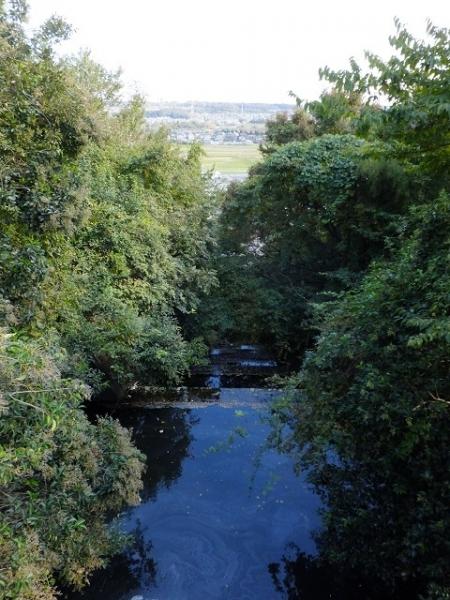 中津原台地段丘崖を下る山際川