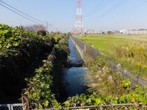 相模川左岸幹線用水路・入谷駅付近