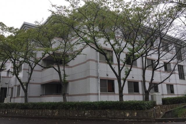 文化会館から「桜餅」の匂い!?