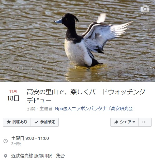11月18日に野鳥観察会を行います!