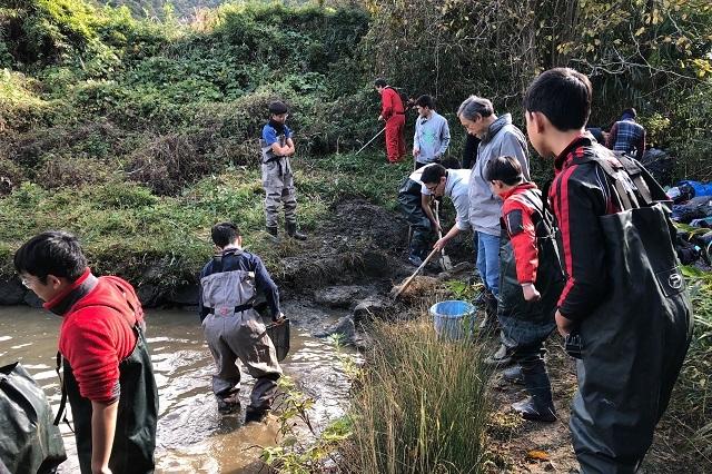 11月のニッポンバラタナゴ定期調査!地道な作業が続くが・・・