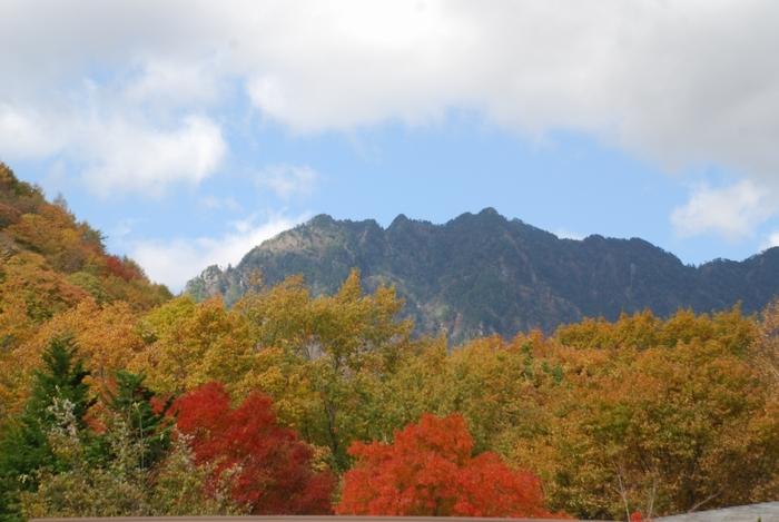 鶏冠山71