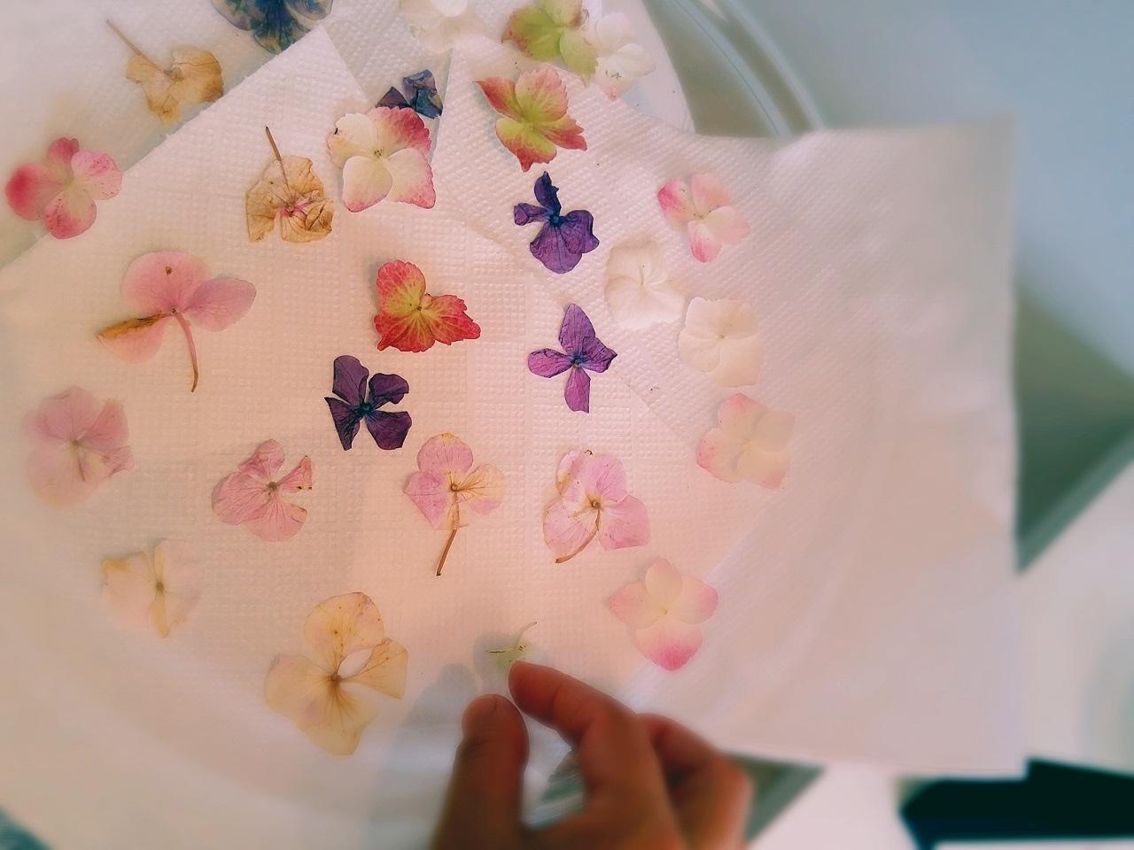 日々のこと~お花と香りで癒やす