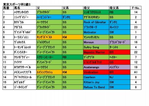 20181117東京スポーツ杯2歳S