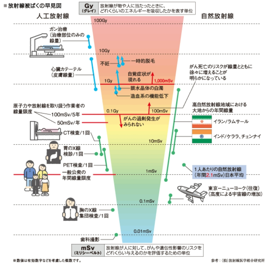 放射線被ばくが人体に与える影響