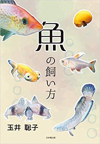 魚の飼い方