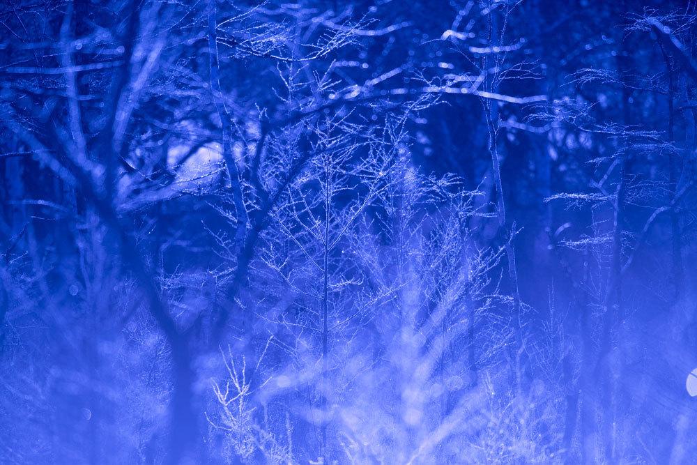 171214-Christmas2.jpg