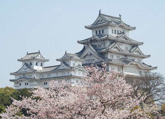 090407姫路城の桜