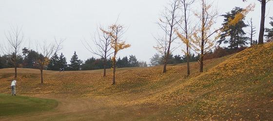 17114信楽ゴルフ-2
