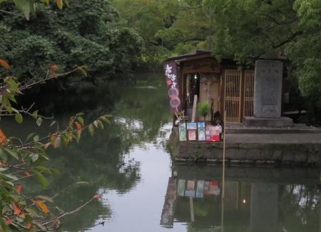 柳川川下り店アオスジアゲハ 073