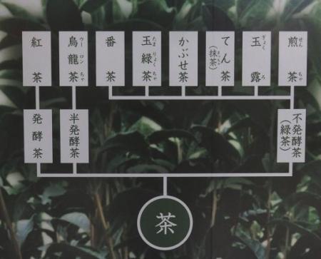 茶の文化館・月 041