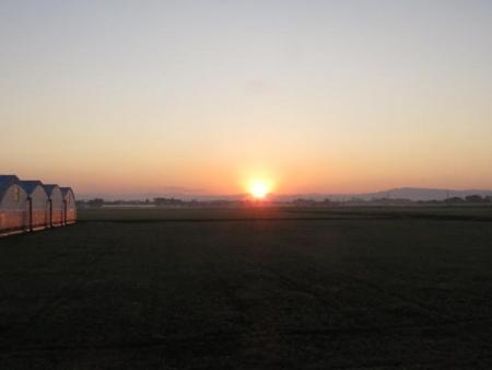 日の出と清水登山 018