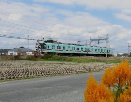 紋付鳥と電車 027
