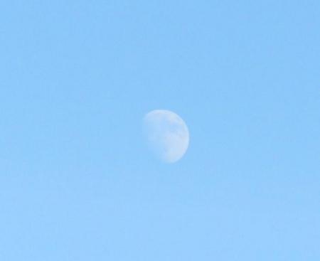天山でお月見する 141