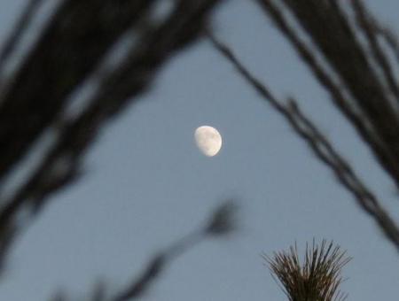 天山でお月見する 179