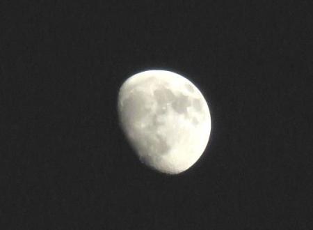 天山でお月見する 190