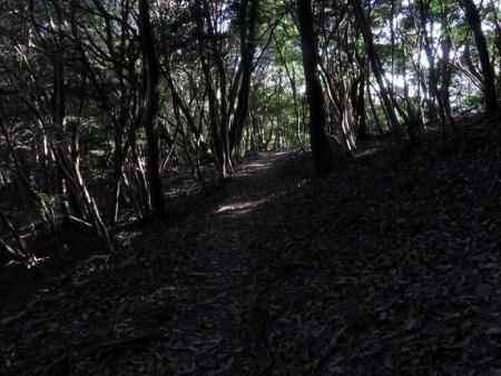 アサヒと清水山 040