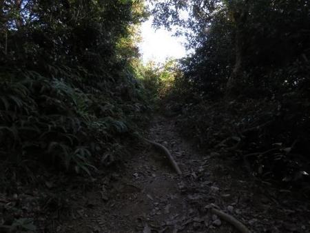 アサヒと清水山 061