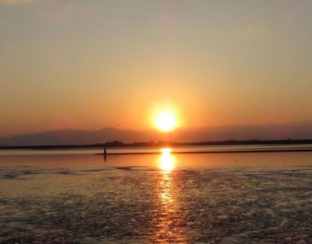 ジョウビタキょう多良岳夕陽 090