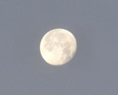 凧とお月様 130