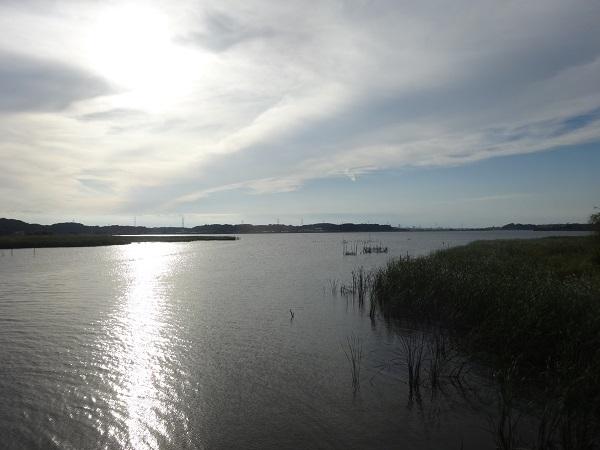 20171008利根運河 (7)