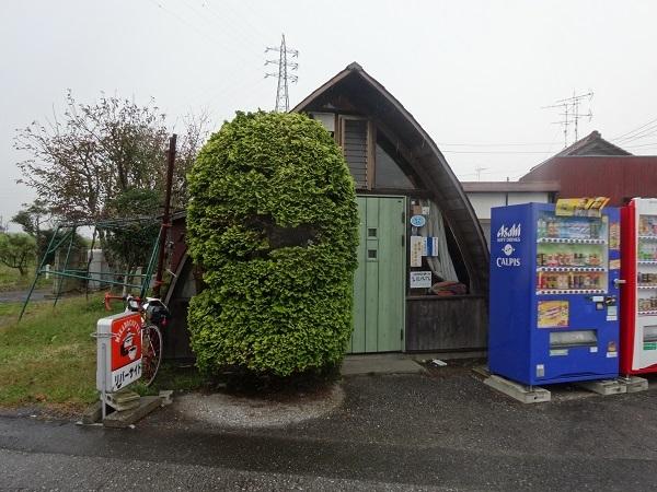 20171028 印旛沼 (6)