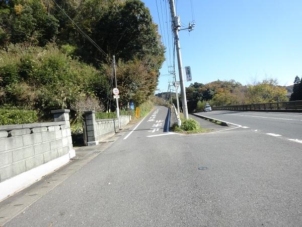20171125野見金山 (18)