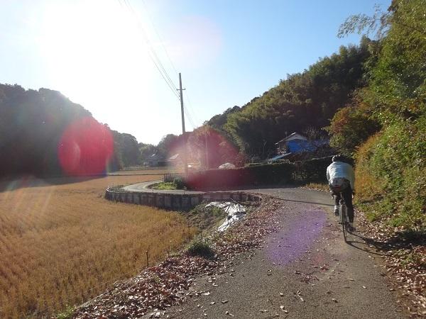 20171209印旛沼周辺 (10)