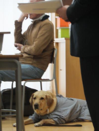20181116美川中学盲導犬5
